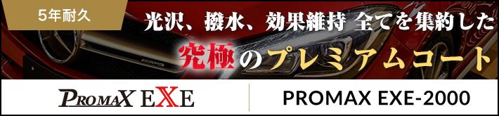 Promax EXE2000